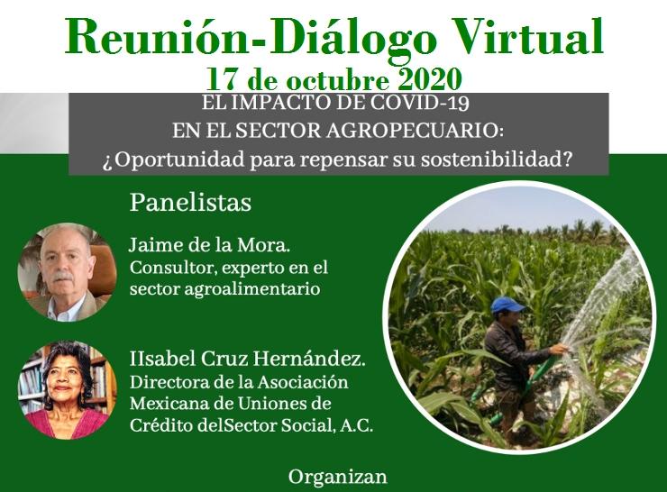 Tercer reunión diálogo virtual